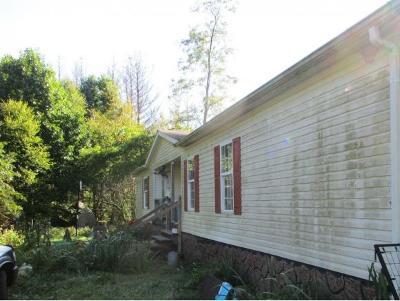 Damascus VA Single Family Home For Sale: $80,000