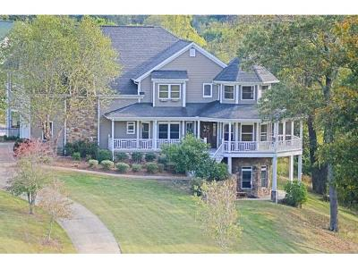 Greeneville Single Family Home For Sale: 3415 Holly Creek Road
