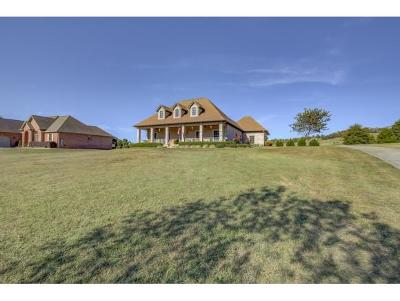 Greeneville Single Family Home For Sale: 882 Waterstone Circle