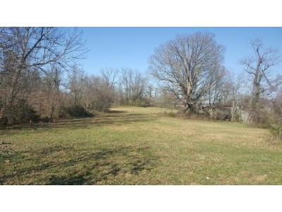 Johnson City Residential Lots & Land For Sale: TR 1 Dalewood Drive