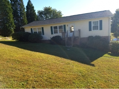 Bluff City Single Family Home For Sale: 266 White Top Circle