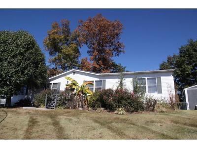 Piney Flats Single Family Home For Sale: 900 Summer Sound Road