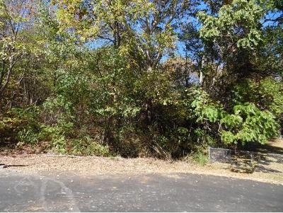 Johnson City Residential Lots & Land For Sale: TBD Stoneybrook Drive