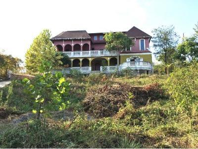 Greeneville Single Family Home For Sale: 210 Sunnyside Road