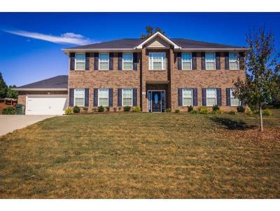 Johnson City Single Family Home For Sale: 65 Amesbury