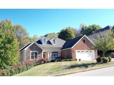 Johnson City Single Family Home For Sale: 203 Woodbriar Drive
