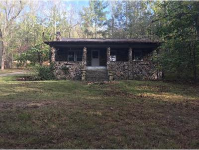 Erwin Single Family Home For Sale: 1960 Chestoa Pike