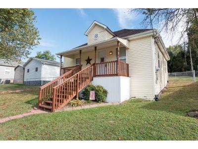 Bristol VA Single Family Home For Sale: $52,500