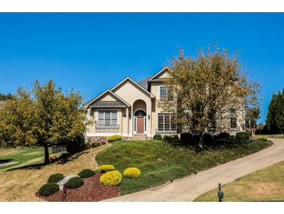 Johnson City Single Family Home For Sale: 121 Highland Gate Drive