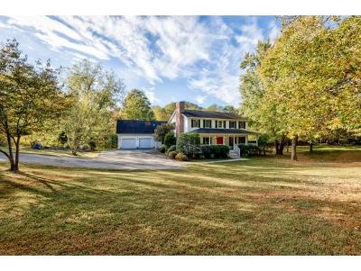 Bristol Single Family Home For Sale: 316 Chatham Rd