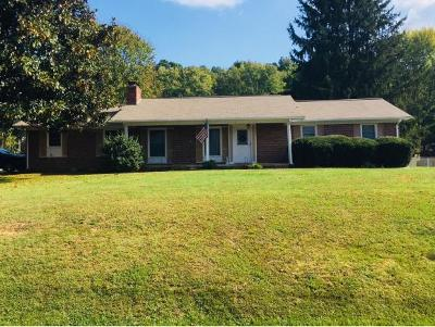 Blountville Single Family Home For Sale: 187 Holston Drive