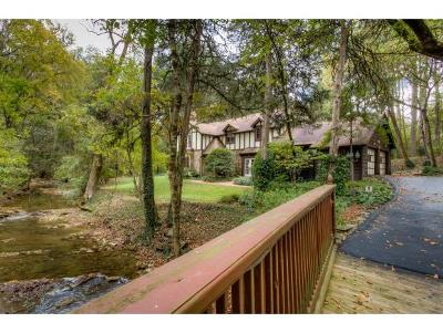 Kingsport Single Family Home For Sale: 301 Lonewood Drive