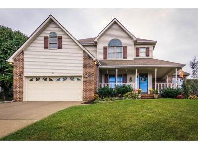 Johnson City Single Family Home For Sale: 4 Nightingale Court