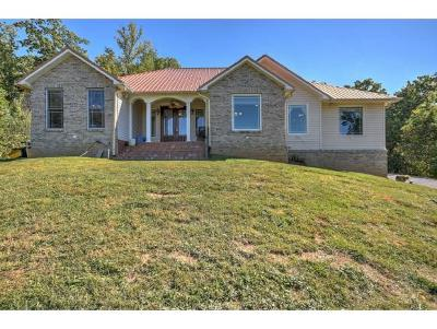 Johnson City Single Family Home For Sale: 155 Pfeiffer Ridge Road