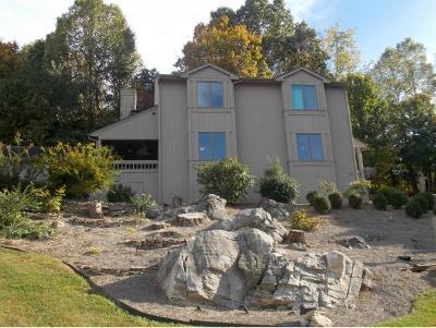 Bristol VA Condo/Townhouse For Sale: $149,900