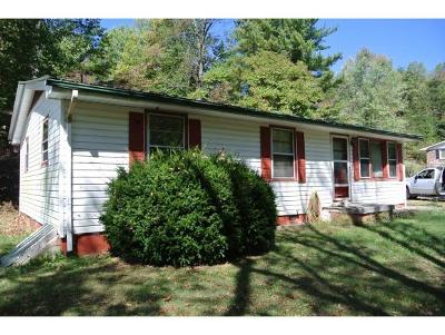 Bristol VA Single Family Home For Sale: $49,900