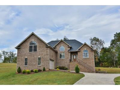 Bluff City Single Family Home For Sale: 1314 Timber Ridge Road