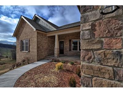 Jonesborough Single Family Home For Sale: 1292 Peaceful Dr