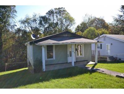 Bristol VA Single Family Home For Sale: $56,900