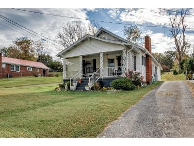 Bristol Single Family Home For Sale: 1088 Highway 126