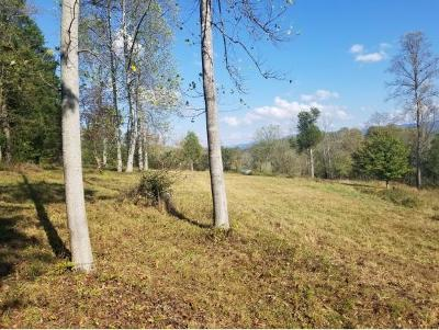 Bristol Residential Lots & Land For Sale: TBD Bullock Hollow Rd