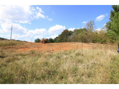 Johnson City Residential Lots & Land For Sale: TBD Kingsport Hwy