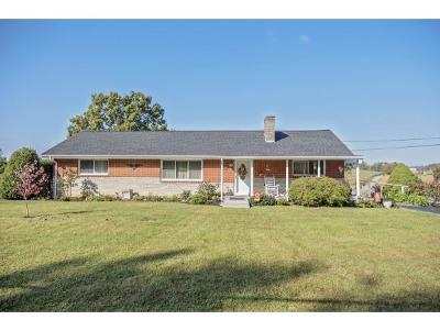 Johnson City Single Family Home For Sale: 1283 Gray Station Rd.