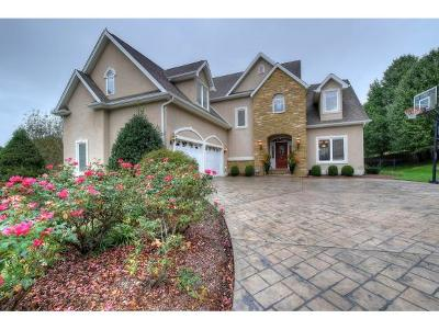 Johnson City Single Family Home For Sale: 102 Lands End Court