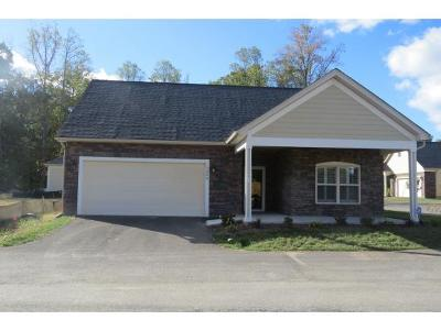 Blountville Single Family Home For Sale: 1466 Hatterdale Farm Road