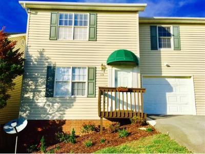 Johnson City Condo/Townhouse For Sale: 119 Glenstone #119