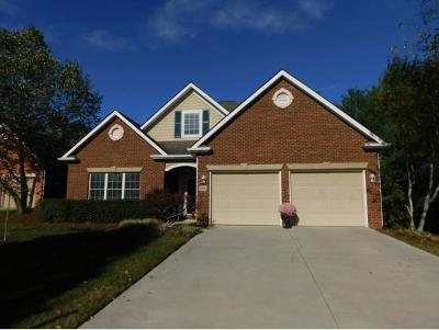Johnson City Single Family Home For Sale: 1924 Waters Edge Drive