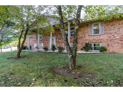 Elizabethton Single Family Home For Sale: 122 Robinson Lane