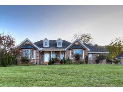 Johnson City Single Family Home For Sale: 107 Shadowood Drive