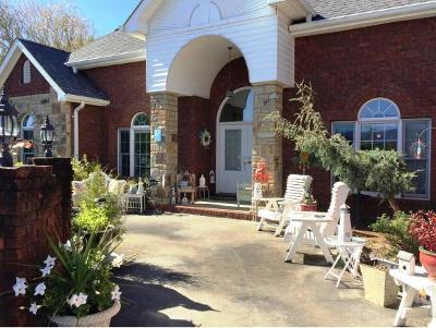 Elizabethton Single Family Home For Sale: 112 Stone Ridge Ct