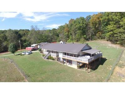 Greeneville Single Family Home For Sale: 7280 Newport Hwy