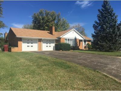 Johnson City Single Family Home For Sale: 3303 Martin Farm Rd