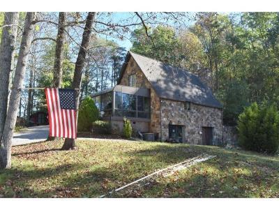 Johnson City Single Family Home For Sale: 427 Laurels Road