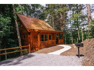 Roan Mountain Single Family Home For Sale: 154 Highway 143