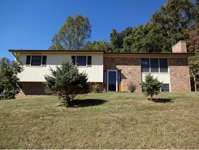 Bristol Single Family Home For Sale: 317 Dartmouth Dr