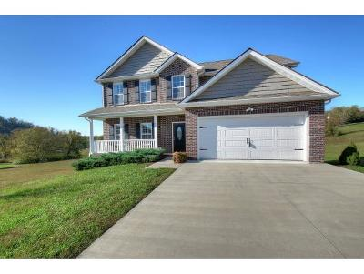 Piney Flats Single Family Home For Sale: 97 Chancery Court