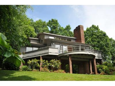 Johnson City Single Family Home For Sale: 3614 Honeywood