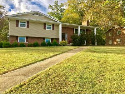 Kingsport Single Family Home For Sale: 221 Kanan Drive