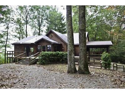Mountain City Single Family Home For Sale: 620 Swift Hollow