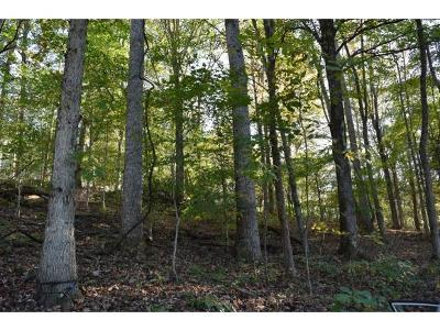 Johnson City Residential Lots & Land For Sale: 124 Raspberry Ridge Road