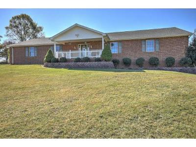 Blountville Single Family Home For Sale: 283 Barger Hollow Rd