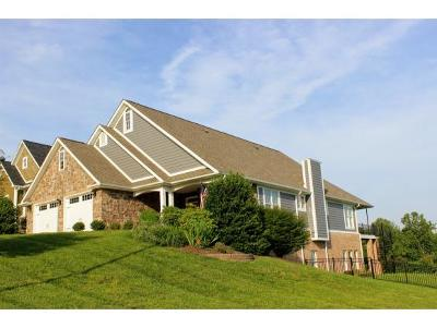 Kingsport Single Family Home For Sale: 263 Old Island Trail