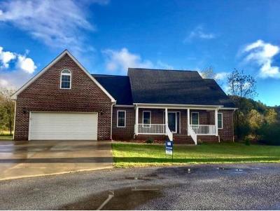 Elizabethton Single Family Home For Sale: 219 Alania Court