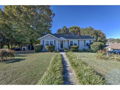 Bristol Single Family Home For Sale: 221 Magnolia Dr