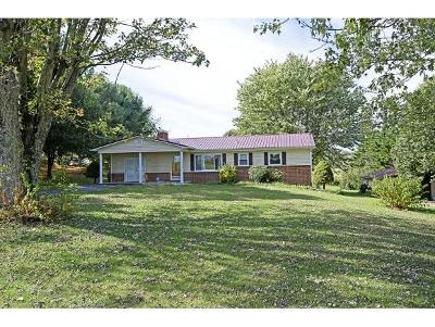 Fall Branch Single Family Home For Sale: 2866 Highway 81