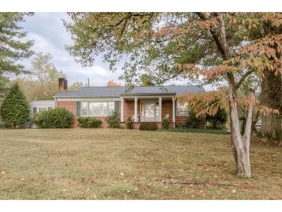 Bristol TN Single Family Home For Sale: $159,985